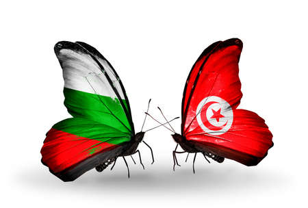 Two butterflies with flags on wings as symbol of relations Bulgaria and Tunisia photo