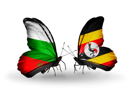 Two butterflies with flags on wings as symbol of relations Bulgaria and Uganda photo