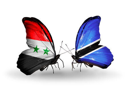 Two butterflies with flags on wings as symbol of relations Syria and Botswana photo