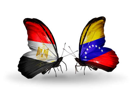 Two butterflies with flags on wings as symbol of relations Egypt and Venezuela photo