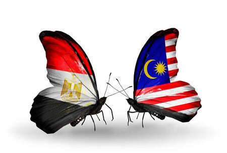 Two butterflies with flags on wings as symbol of relations Egypt and Malaysia photo
