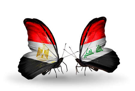 iraq money: Two butterflies with flags on wings as symbol of relations Egypt and Iraq