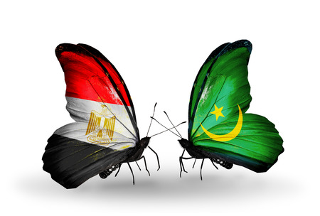 Two butterflies with flags on wings as symbol of relations Egypt and Mauritania photo