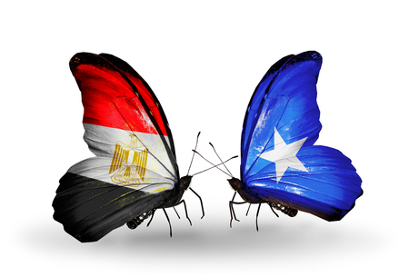 Two butterflies with flags on wings as symbol of relations Egypt and Somalia photo