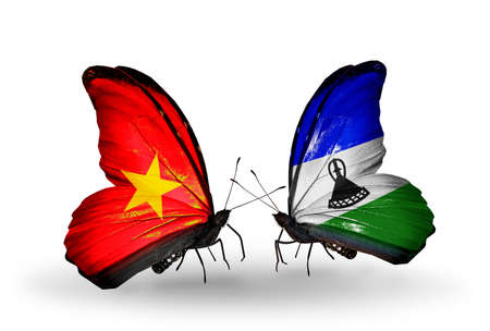 Two butterflies with flags on wings as symbol of relations Vietnam and Lesotho photo