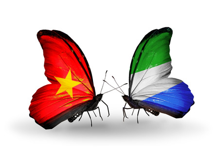 Two butterflies with flags on wings as symbol of relations Vietnam and Sierra Leone photo