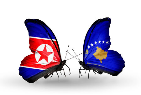 Two butterflies with flags on wings as symbol of relations North Korea and  Kosovo photo