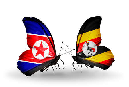 Two butterflies with flags on wings as symbol of relations North Korea and  Uganda photo