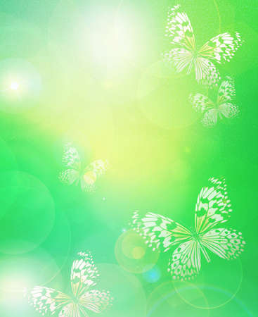 Sunshine with butterflies as abstract lights background photo