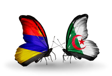 Two butterflies with flags on wings as symbol of relations Armenia and Algeria photo