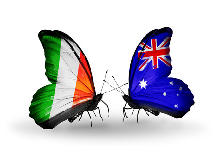 Two butterflies with flags on wings as symbol of relations  Ireland and  Australia photo