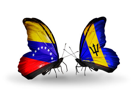 Two butterflies with flags on wings as symbol of relations Venezuela and  Barbados photo