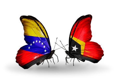 Two butterflies with flags on wings as symbol of relations Venezuela and  East Timor photo