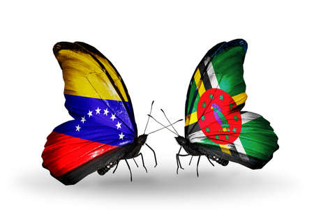 Two butterflies with flags on wings as symbol of relations Venezuela and  Dominica photo