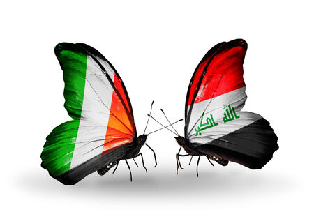 iraq money: Two butterflies with flags on wings as symbol of relations Ireland and  Iraq Stock Photo