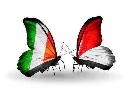 Two butterflies with flags on wings as symbol of relations Ireland and Monaco, Indonesia photo