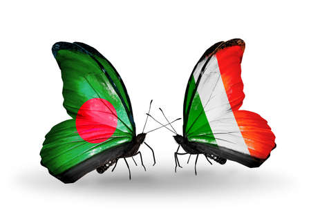 Two butterflies with flags on wings as symbol of relations Bangladesh and Ireland photo