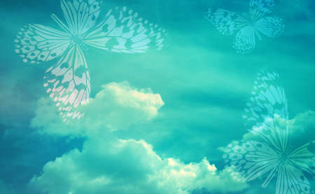 Sky with butterfly as abstract lights background photo