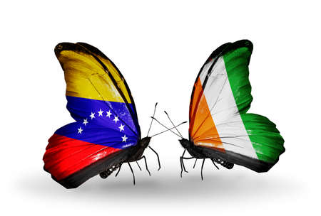 Two butterflies with flags on wings as symbol of relations Venezuela and Cote Divoire photo