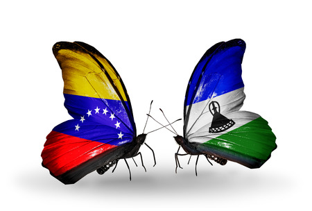 Two butterflies with flags on wings as symbol of relations Venezuela and Lesotho photo