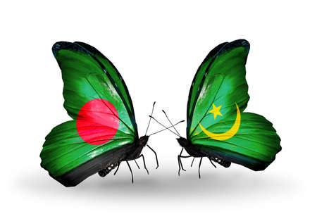 Two butterflies with flags on wings as symbol of relations Bangladesh and Mauritania photo