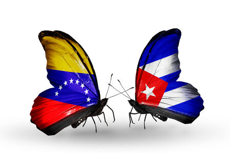 Two butterflies with flags on wings as symbol of relations Venezuela and Cuba Stock Photo