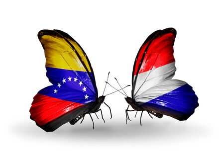 Two butterflies with flags on wings as symbol of relations Venezuela and Holland photo