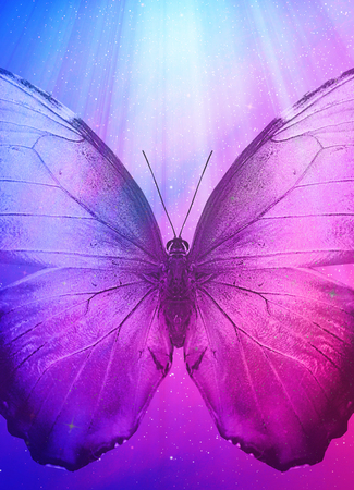 Color  sky with butterfly, background photo