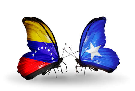 Two butterflies with flags on wings as symbol of relations Venezuela and Somalia photo