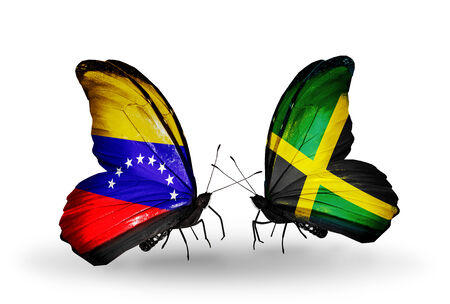 Two butterflies with flags on wings as symbol of relations Venezuela and  Jamaica photo