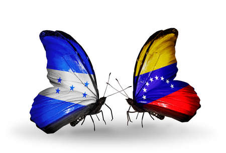 Two butterflies with flags on wings as symbol of relations Honduras and Venezuela photo