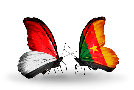 Two butterflies with flags on wings as symbol of relations Monaco, Indonesia and Cameroon photo