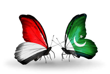Two butterflies with flags on wings as symbol of relations Monaco, Indonesia and Pakistan photo