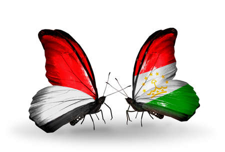 Two butterflies with flags on wings as symbol of relations Monaco, Indonesia and Tajikistan photo