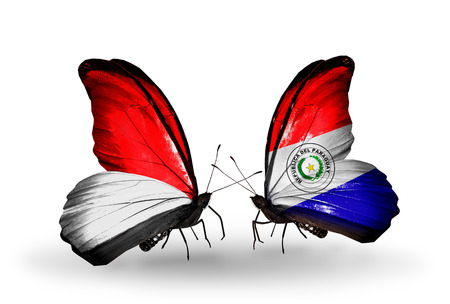 Two butterflies with flags on wings as symbol of relations Monaco, Indonesia and Paraguay photo