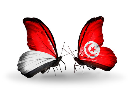 Two butterflies with flags on wings as symbol of relations Monaco, Indonesia and Tunisia photo