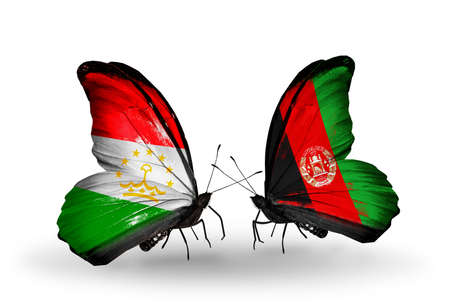 economy of tajikistan: Two butterflies with flags on wings as symbol of relations Tajikistan and Afghanistan