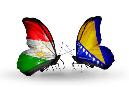 economy of tajikistan: Two butterflies with flags on wings as symbol of relations Tajikistan and Bosnia and Herzegovina