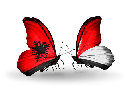 Two butterflies with flags on wings as symbol of relations Albania and Monaco, Indonesia photo
