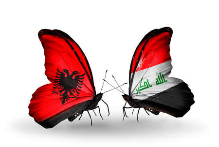 iraq money: Two butterflies with flags on wings as symbol of relations Albania and  Iraq