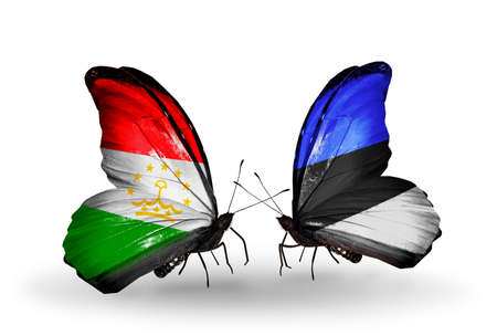economy of tajikistan: Two butterflies with flags on wings as symbol of relations Tajikistan and Estonia