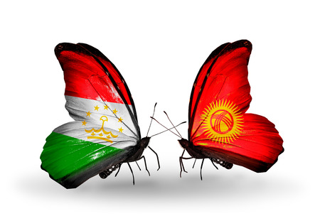 economy of tajikistan: Two butterflies with flags on wings as symbol of relations Tajikistan and Kirghiz