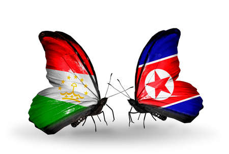 economy of tajikistan: Two butterflies with flags on wings as symbol of relations Tajikistan and North Korea Stock Photo