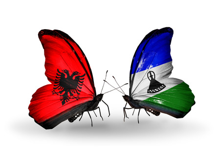 Two butterflies with flags on wings as symbol of relations Albania and Lesotho photo