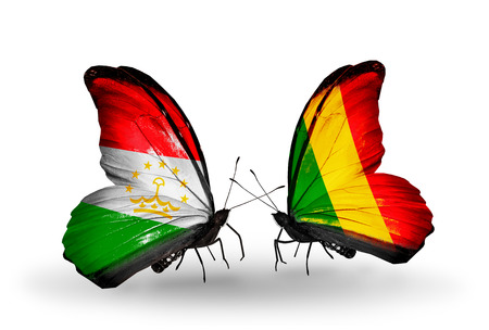 economy of tajikistan: Two butterflies with flags on wings as symbol of relations Tajikistan and Mali