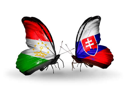 economy of tajikistan: Two butterflies with flags on wings as symbol of relations Tajikistan and Slovakia