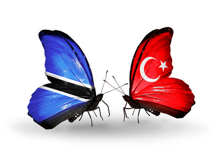 Two butterflies with flags on wings as symbol of relations Botswana and Turkey photo