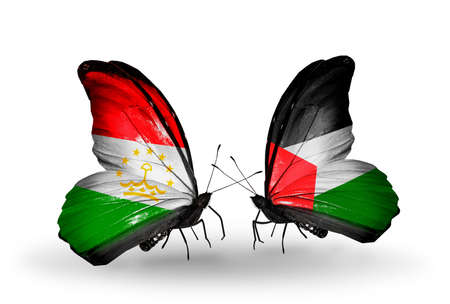 economy of tajikistan: Two butterflies with flags on wings as symbol of relations Tajikistan and Palestine