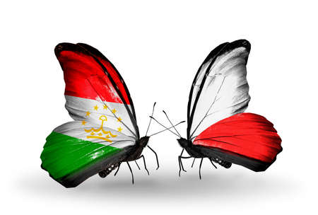 economy of tajikistan: Two butterflies with flags on wings as symbol of relations Tajikistan and Poland