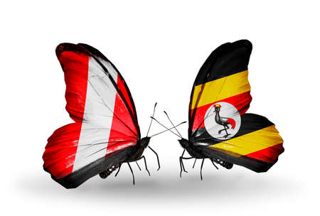 Two butterflies with flags on wings as symbol of relations Peru and Uganda photo